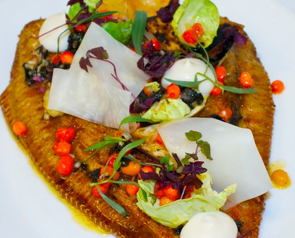 -Pan-fry plaice served with salt back celeriac, celeriac pure, pickle celeriac ruban, vinaigrette of havton and black trumpet, shallots rasp oil, pluck Brussels sprout, red cress and pluck estrogen.